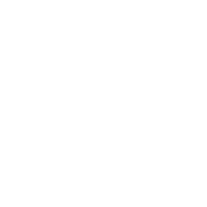 idea icon of a head with a lightbulb in it
